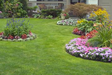 Servizi di giardinaggio