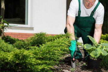 Manutenzione giardini e parchi